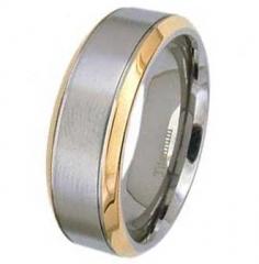 Ring Titan Modell 14