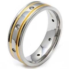 Ring Titan Modell 43