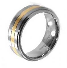 Ring Titan Modell 45