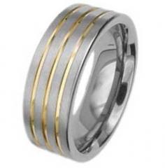 Ring Titan Modell 8